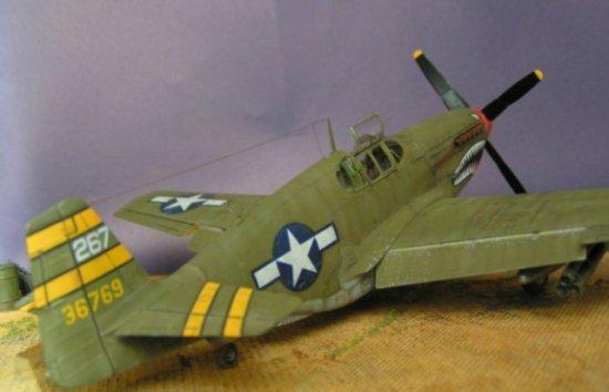 P-51 B Mustang - Riccardo Cugnetto