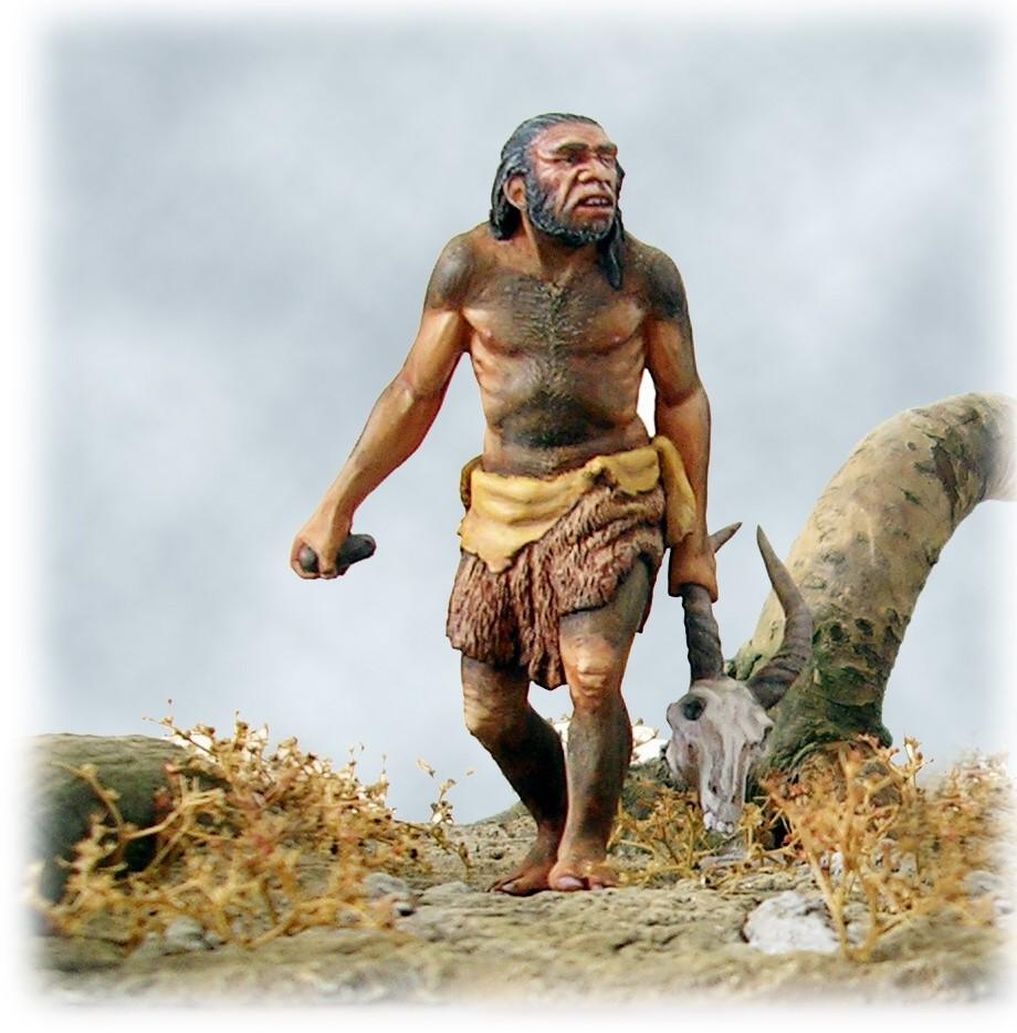 Evoluzione dall uomo della preistoria al neolitico imparo for Planimetrie della caverna dell uomo